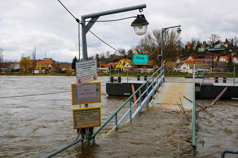 Plötzlich hatte die Elbe in Pirna wieder Wasser.