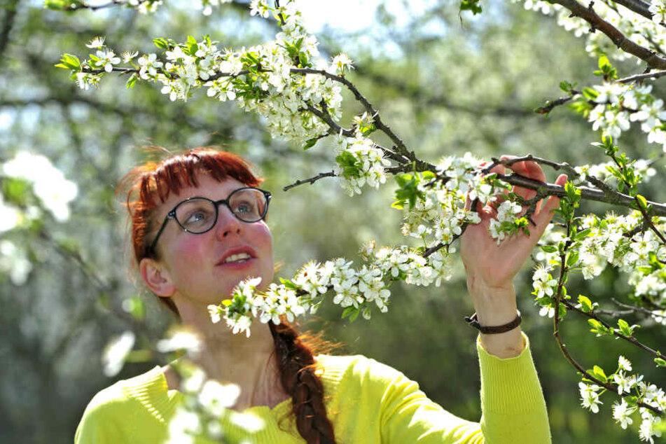 """Susann Enzmann (37) vom Verein """"Naturhof Chemnitz"""" auf einer Streuobstwiese in Glösa-Draisdorf."""