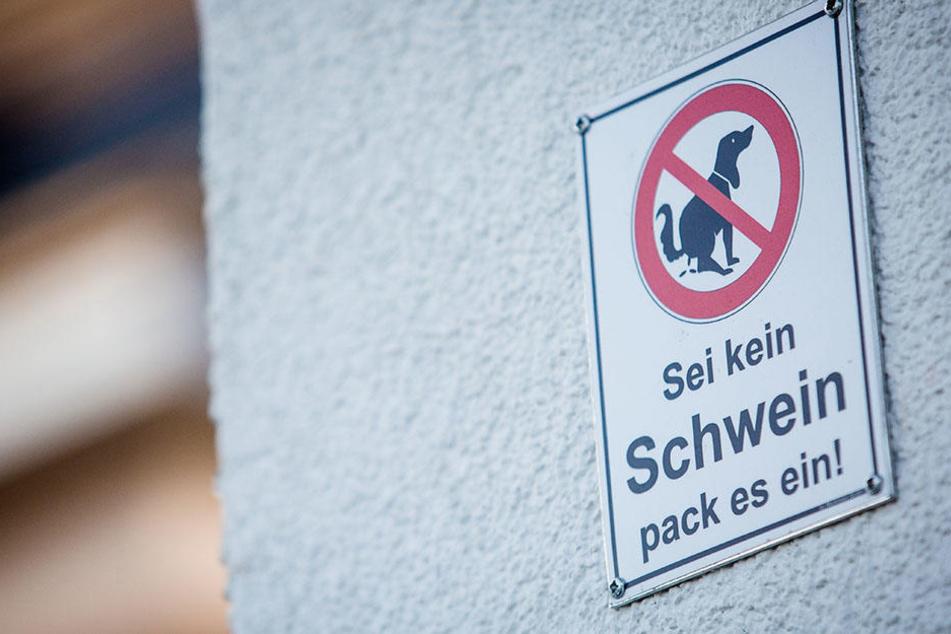 Der Senat ist beim Kampf gegen die Verschmutzung der Bürgersteige durch Hundekot bislang gescheitert.