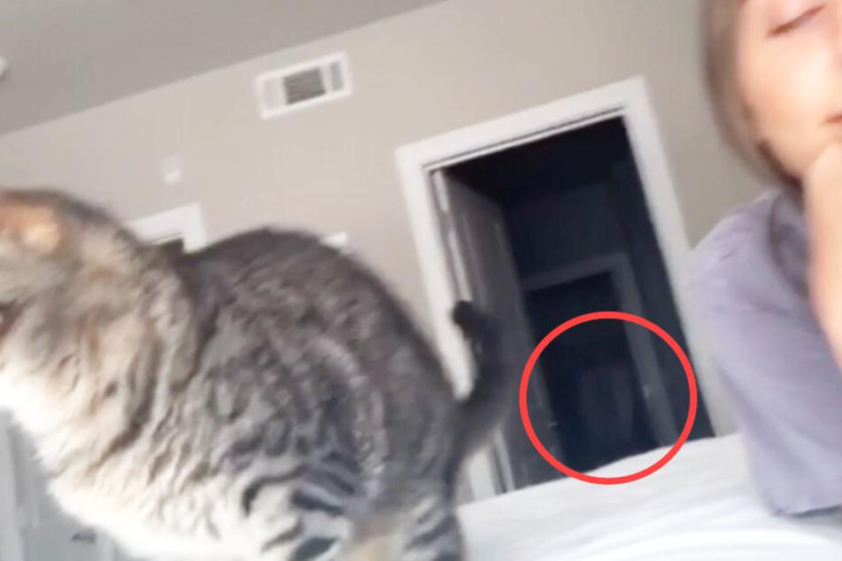 Ein kurzes Video sorgt im Internet für Aufsehen. Ist hier ein Geist zu sehen?
