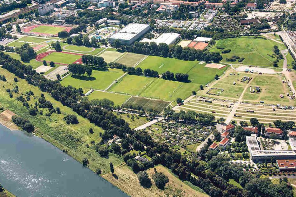 """Das ist Dresdens """"Sport-Olymp"""". Schauen Sie mal, wo im Ostragehege überall  Sport getrieben wird."""