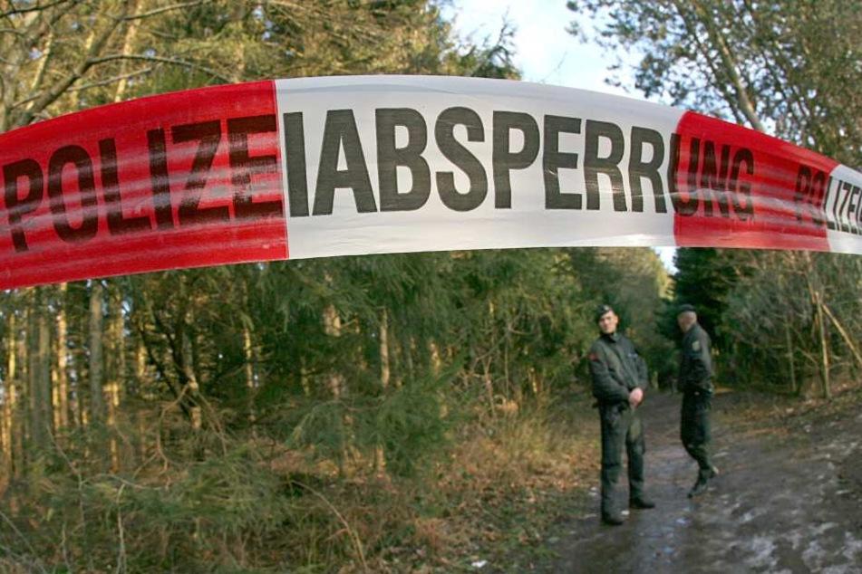 Mitten im Thüringer Wald musste der Mann sterben. (Symbolbild)