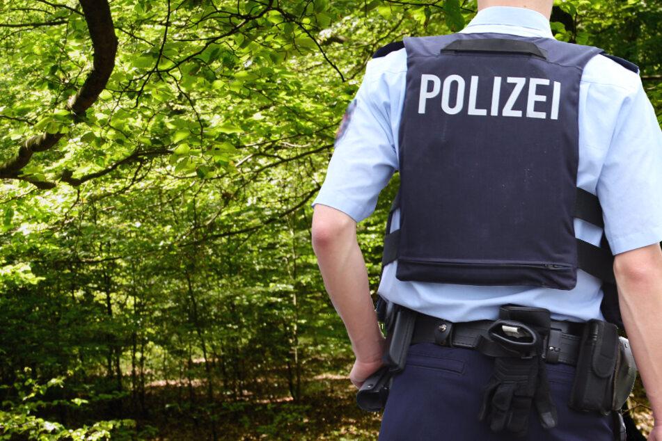 Sex-Attacke bei Marburg: Nackter Mann überfällt Frau im Wald, Polizei sucht Zeugen