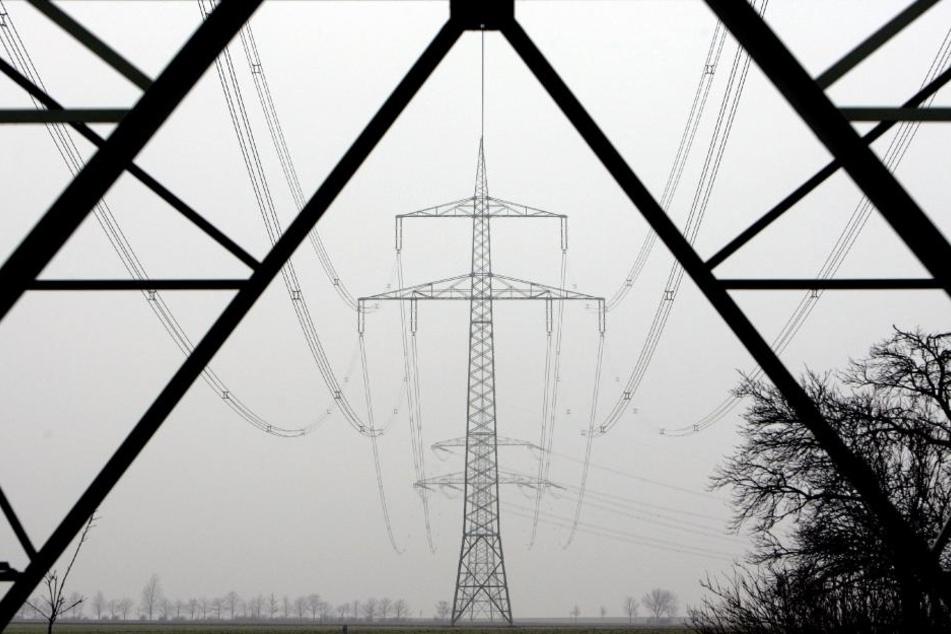 Künftig sollen Erzeuger mit eigenen Kraftwerken, die ihren Strom selbst verbrauchen oder ins eigene Netz einspeisen, keine so genannten vermiedenen Netzentgelte mehr erhalten.
