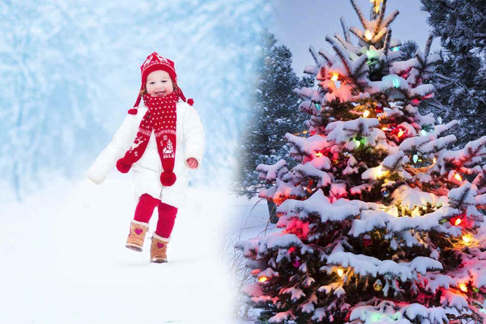 Endlich mal wieder im Schnee spielen, bis das Christkind kommt?