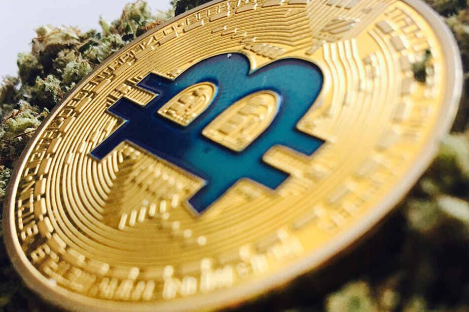 Die ausgehobene Plattform funktionierte wohl mit Hilfe anonymer Bitcoin-Zahlungen.