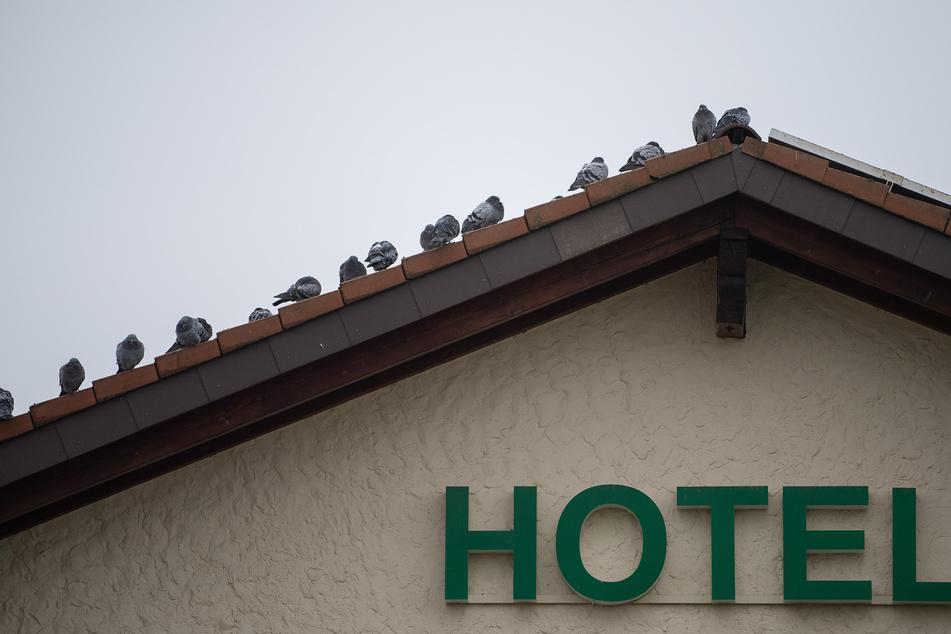 Mehrere Bundesländer planen wieder Öffnungen im Bereich der Hotellerie sowie Gastronomie.