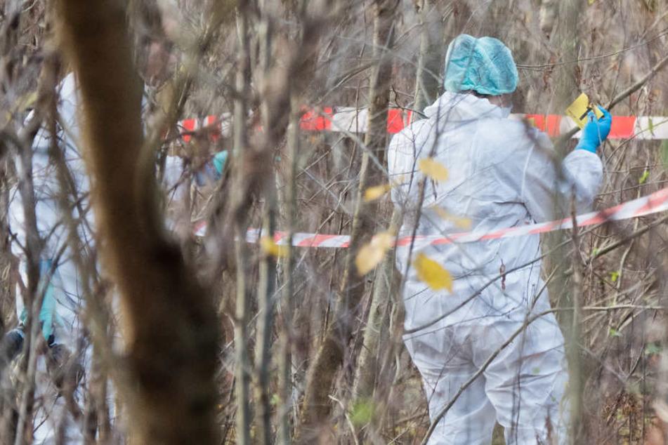 Die Lebensgefährtin (37) am Mittwoch tot im Waldgebiet nahe Ostbevern gefunden. (Symbolbild)