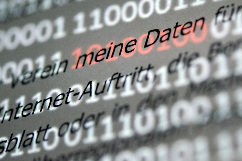 """Der Abschnitt """"meine Daten"""" einer Musterdatenschutzerklärung der EU."""
