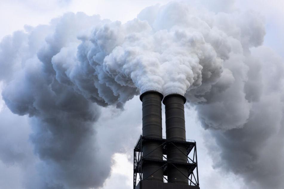 Abgase und Dampf steigen aus dem Schornstein des Kohlekraftwerks Moorburg in den Hamburger Himmel.