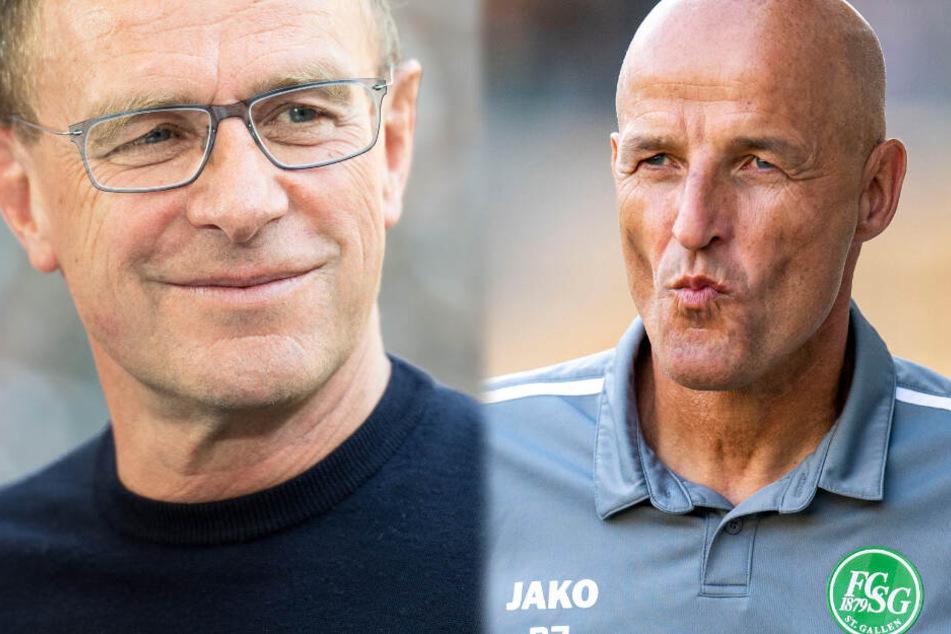 Ex-Jugendtrainer des VfB startet voll durch: Ralf Rangnick traut ihm Bundesliga zu