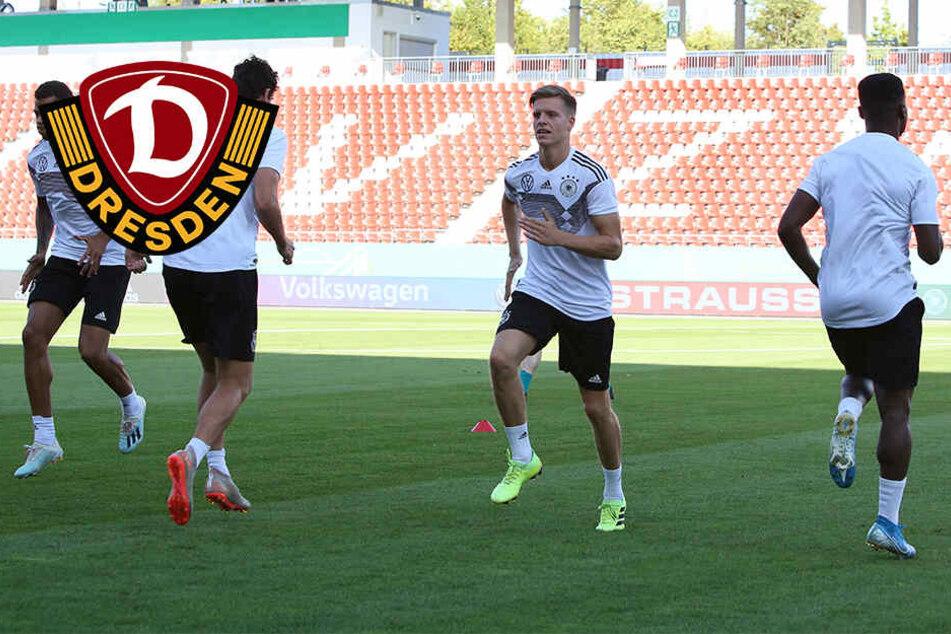 "Dynamos Burnic bei der U21: ""Hier kann man noch viel lernen"""