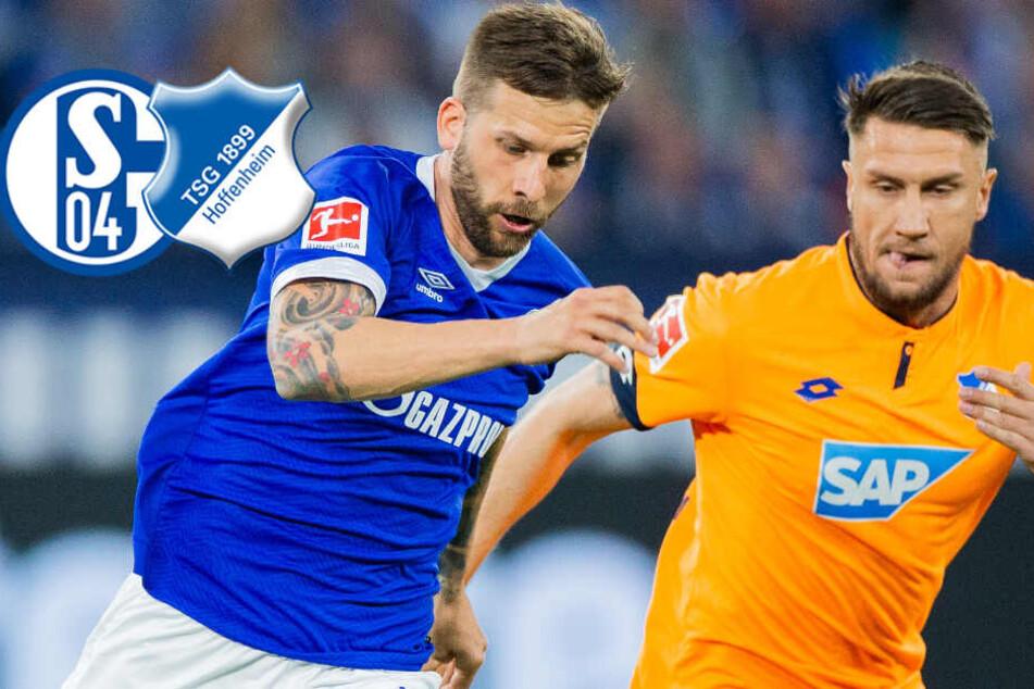 Kantersieg! Hoffenheim zerlegt Schalke im Stil einer Spitzenmannschaft