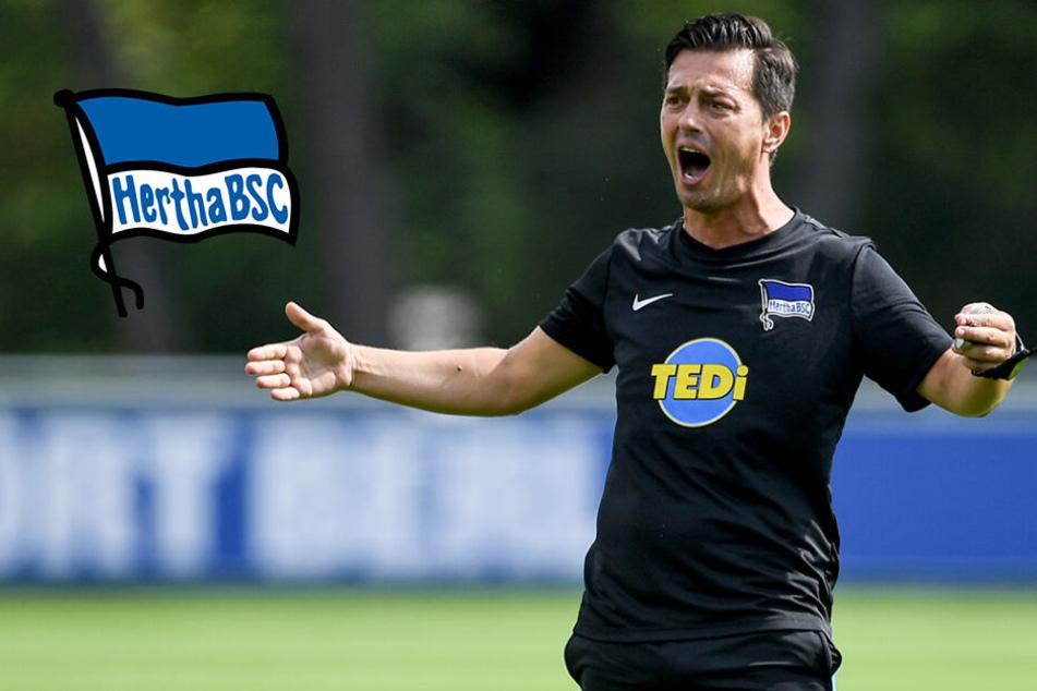 Hertha-Trainer Covic will bei Bundesliga-Premiere den FC Bayern ärgern