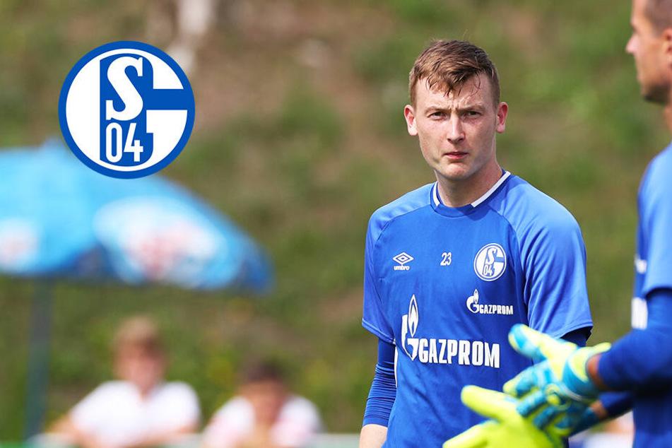 Ex-Dynamo Markus Schubert vor Bundesliga-Debüt für den FC Schalke 04!