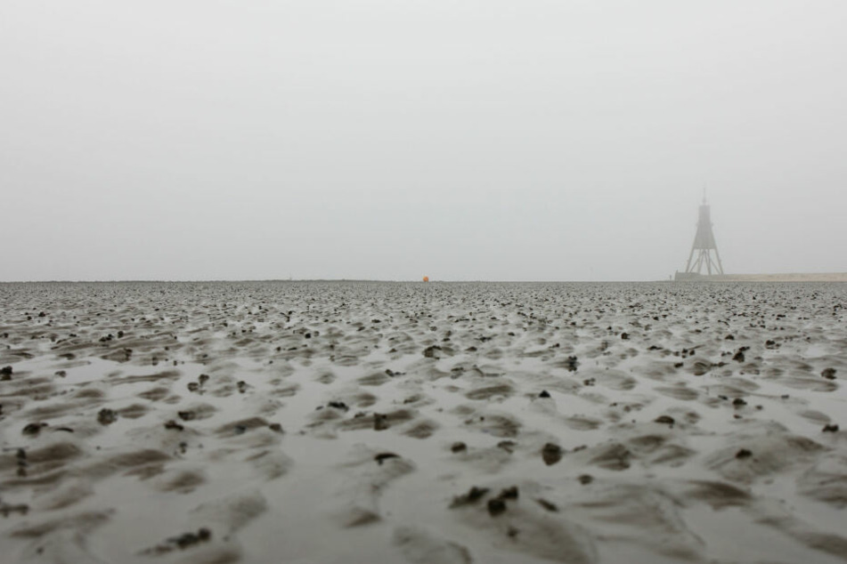 Das Wattenmeer in Cuxhaven an einem nebligen Tag (Symbolbild).