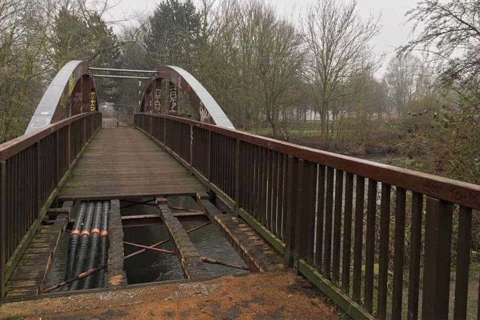 Die Bauernbrücke wurde von einem Pilz befallen. Das Holz ist stark geschädigt.