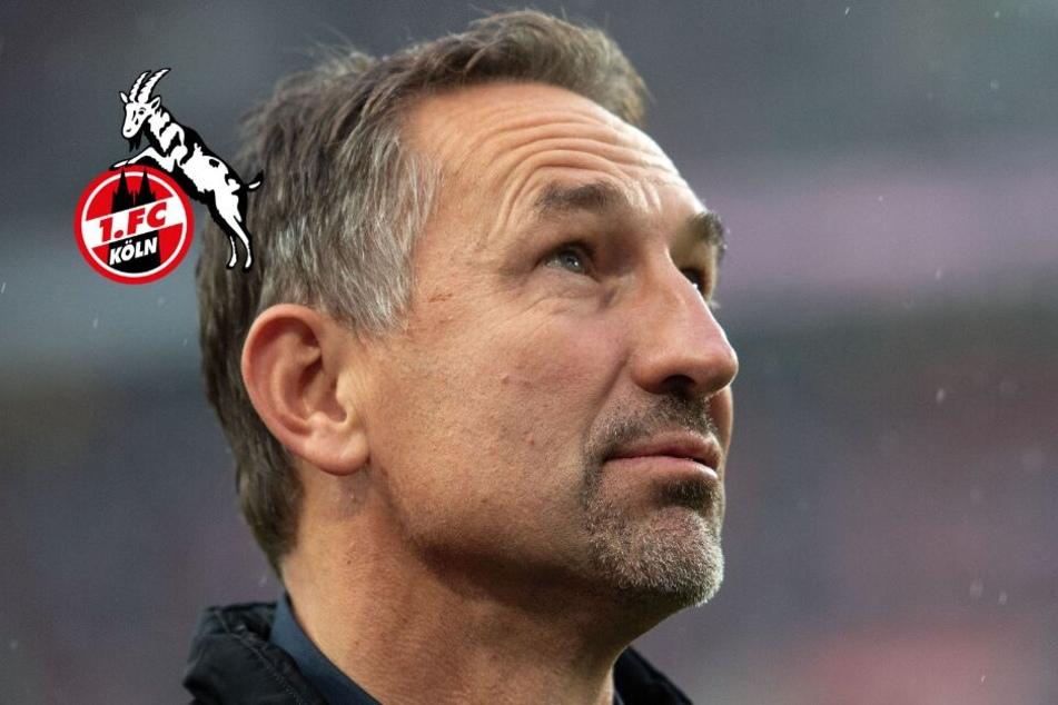Nach Kölner Pokal-Aus in Saarbrücken: Trainer Beierlorzer ratlos