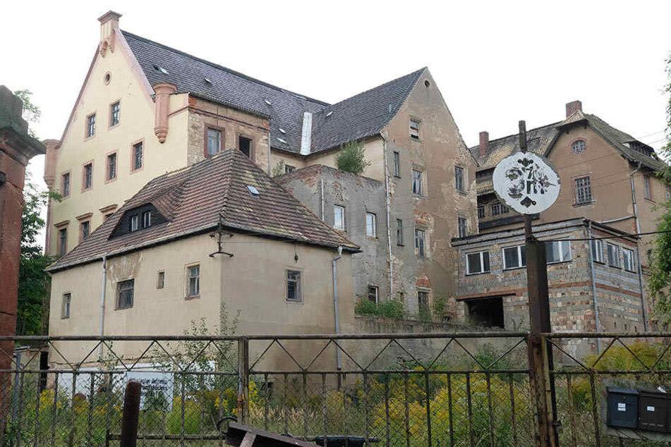 Das Rittergut Sahlis geht an einen Investor aus dem Münsterland. Dieser muss nur noch den Kaufpreis überweisen.