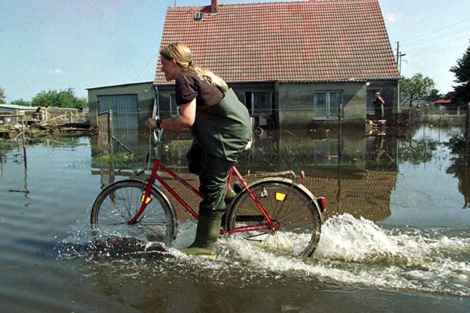 Eine Anwohnerin fährt mit einem Fahrrad durch eine vom Oderhochwasser überflutete Straße. (Symbolbild)