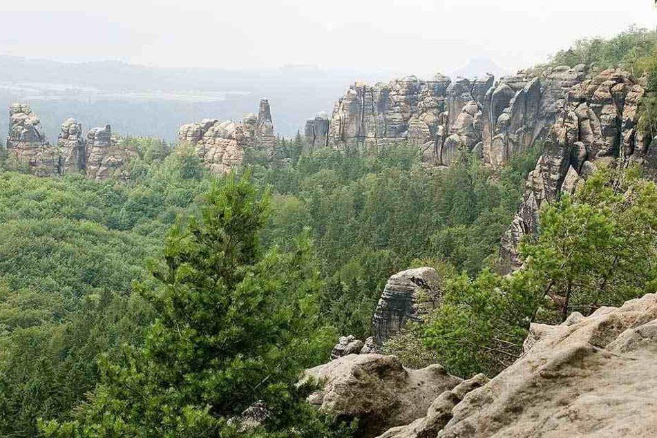 Unweit der Schrammsteine stürzte der Wanderer 20 Meter in die Tiefe.