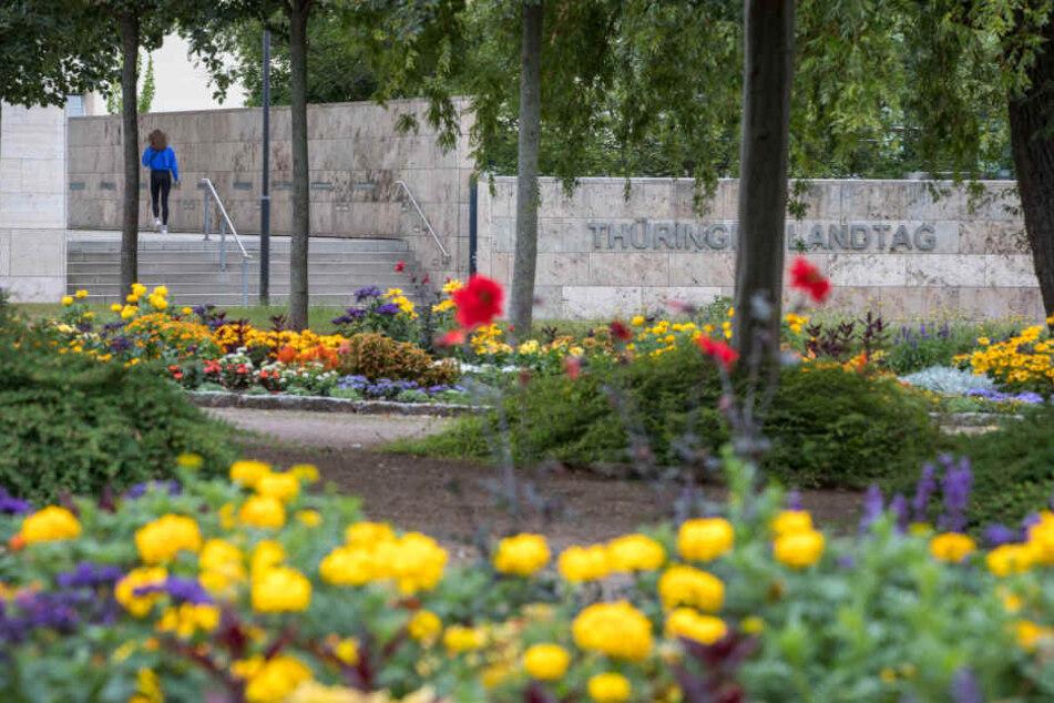 Der Park vor dem Thüringer Landtag ist ein möglicher Standort für den Gedenkort.