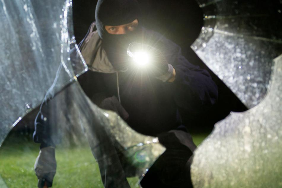 Eine Zeugin rief die Polizei, weil sie nachts einen Verdächtigen mit Taschenlampe im Garten des Nachbars gesehen hatte. (Symbolbild)