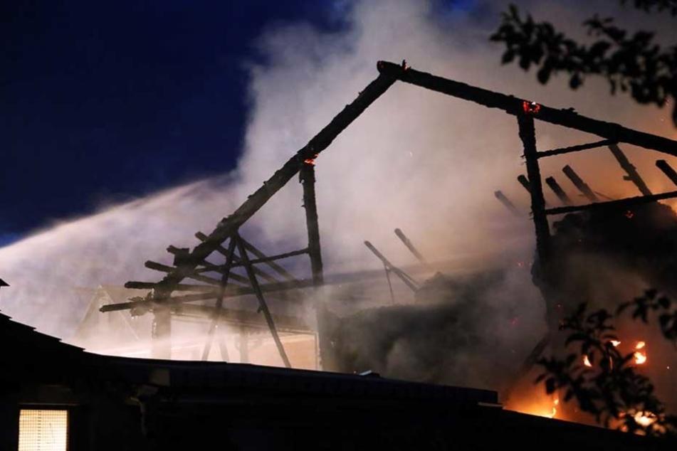 Bei dem Scheunenbrand konnte die Feuerwehr die Pferde nicht retten (Symbolbild).