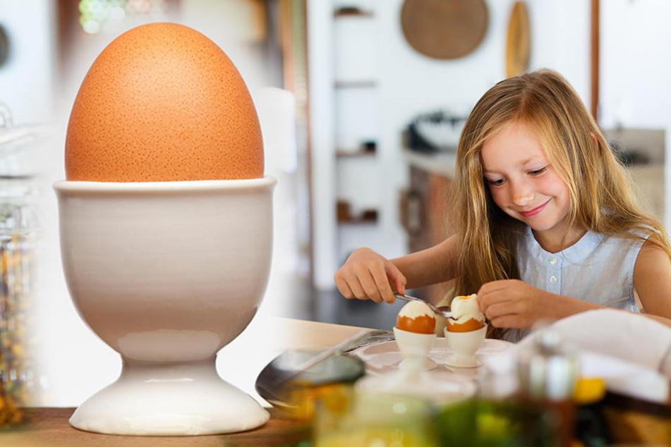 Klein aber oho so hart ist das eier gesch ft wirklich - Eier hart kochen zeit ...