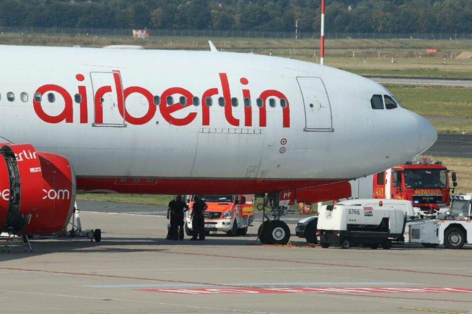 Ein Airbus A330 ist von dem Rattenbefall betroffen (Symbolbild).