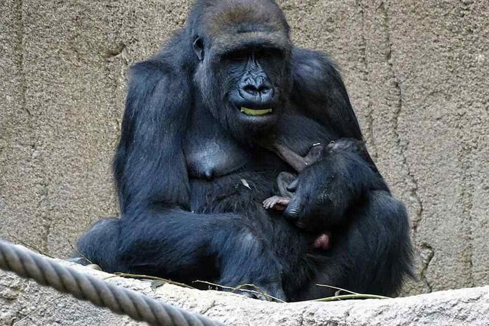 Mutter Kibara hält ihr Baby im Arm.