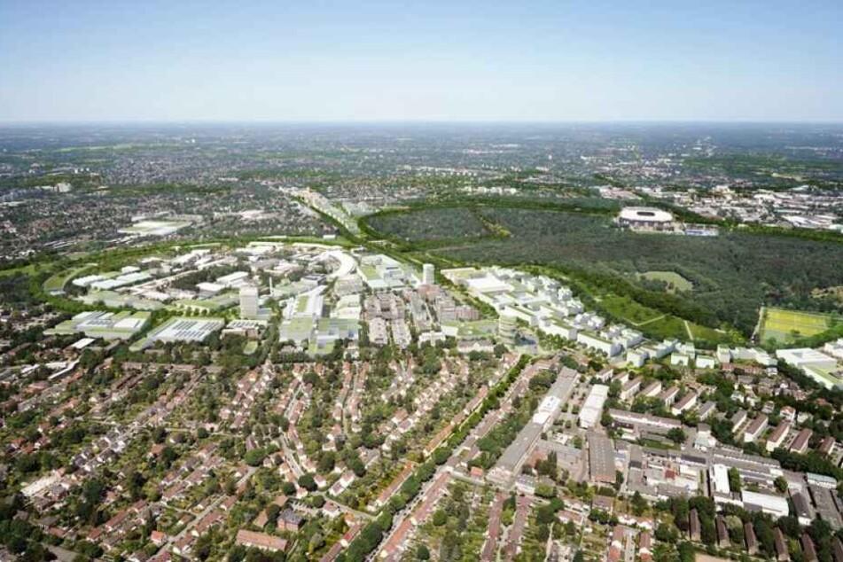 Zusammen mit der Universität und dem DESY möchte die Stadt Hamburg einen ganzen Stadtteil der Wissenschaft widmen.