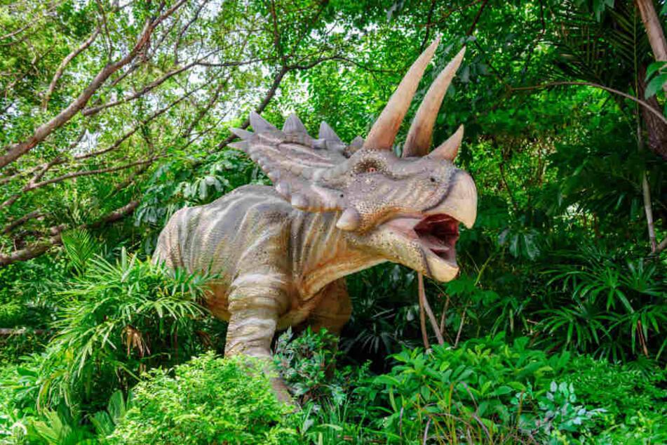 Der Nachbau eines Triceratops.