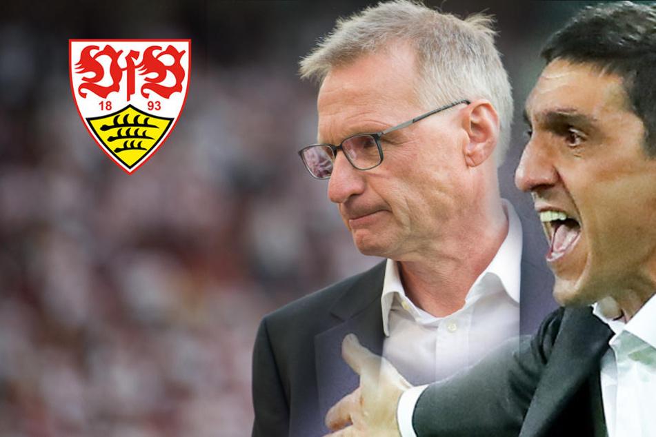 Meinung zur Korkut-Entlassung: Die VfB-Fans haben ein besseres Gespür als der Vorstand!