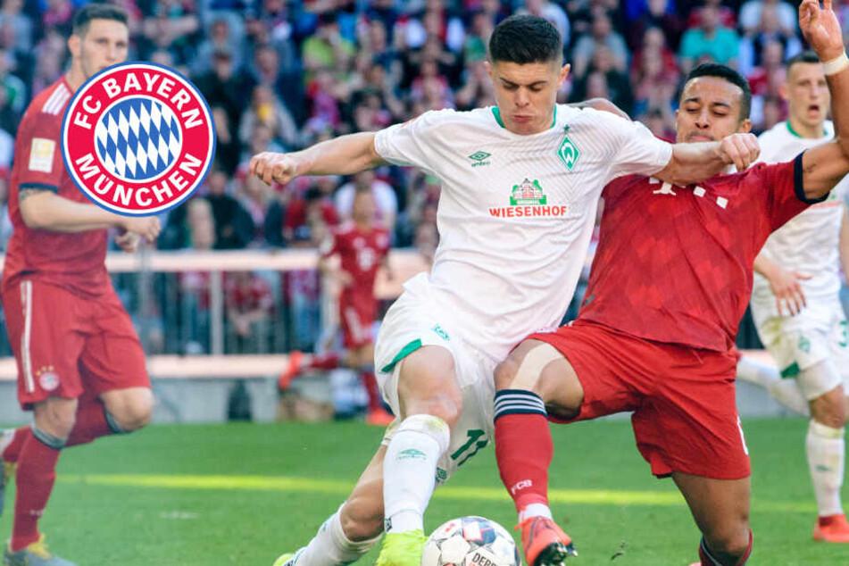 Double-Prüfung, Teil 2: FC Bayern vor Pokalfight gegen Werder Bremen gewarnt