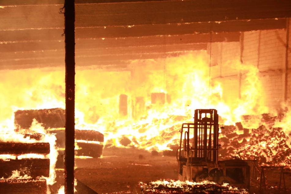 Riesige Flammen! Am Donnerstagmorgen stand eine Lagerhalle in Coswig in Flammen.