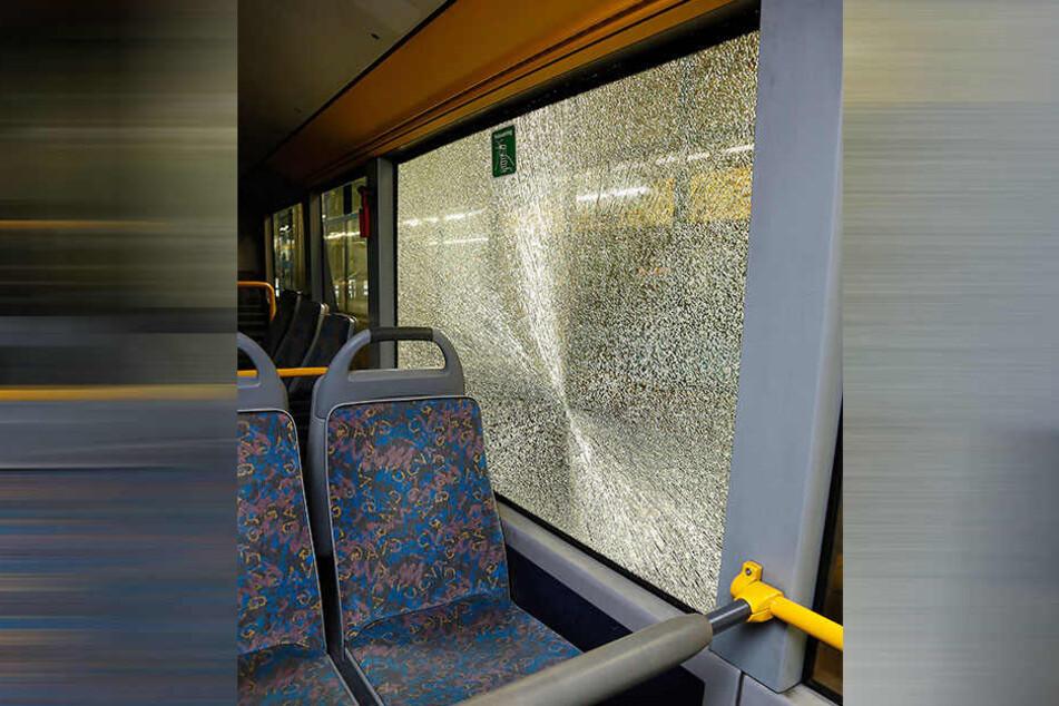 Die Scheibe eines Linienbusses ging zu Bruch, als ein Unbekannter darauf schoss.