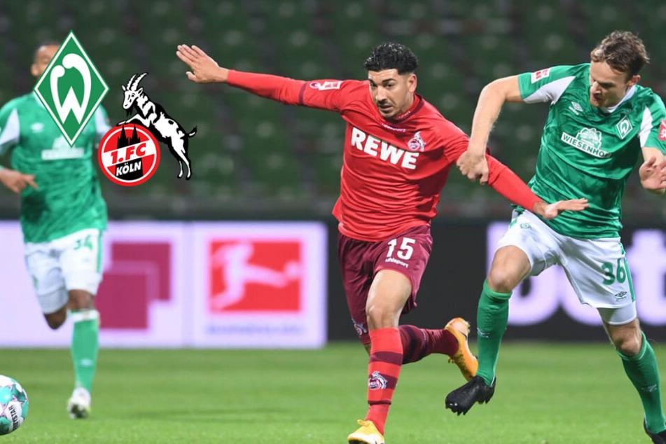 Eigentor und Elferfrust! 1. FC Köln verpasst Sieg in Bremen
