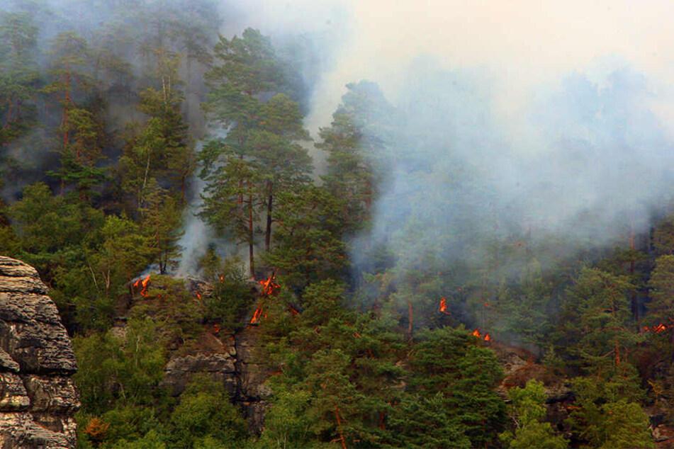 In einem unzugänglichen Gebiet unterhalb der Bastei ist das Feuer ausgebrochen.