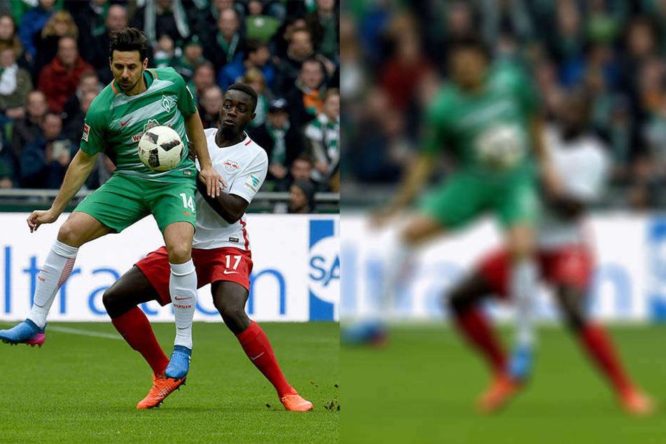 Gegen Werder Bremen (hier im Zweikampf mit Claudio Pizarro) bestritt Upamecano sein bislang bestes Spiel für die Roten Bullen.