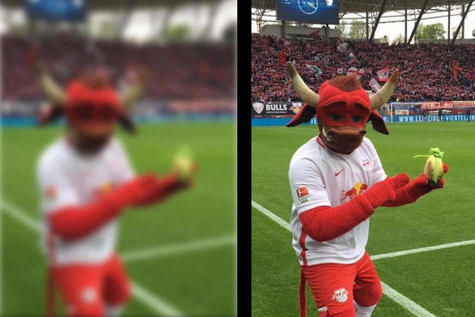Oster Überraschung! RB Leipzig verteilt Geschenke an Fans   TAG24