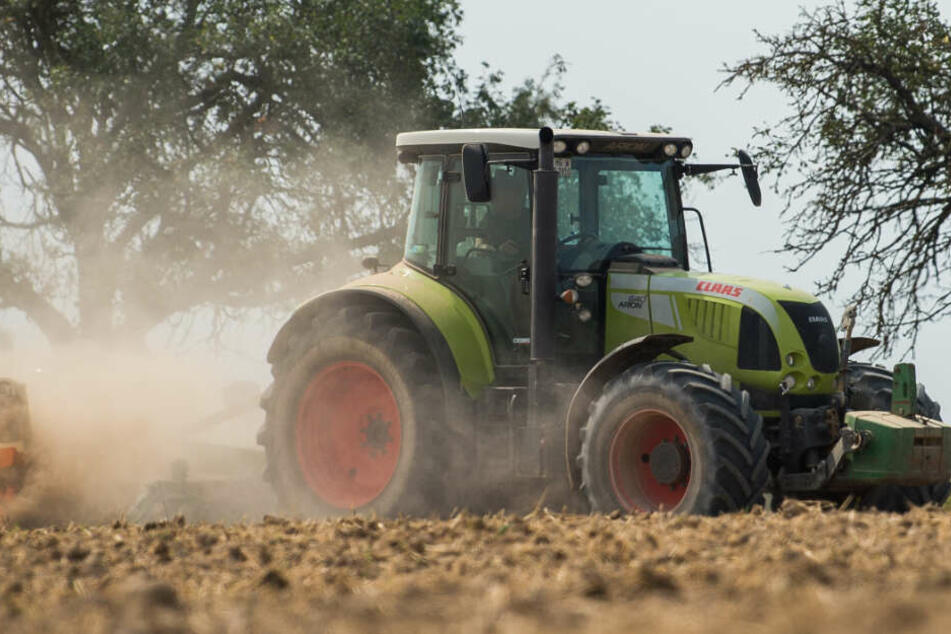 Der Landwirt war im Traktor unterwegs. (Symbolbild)
