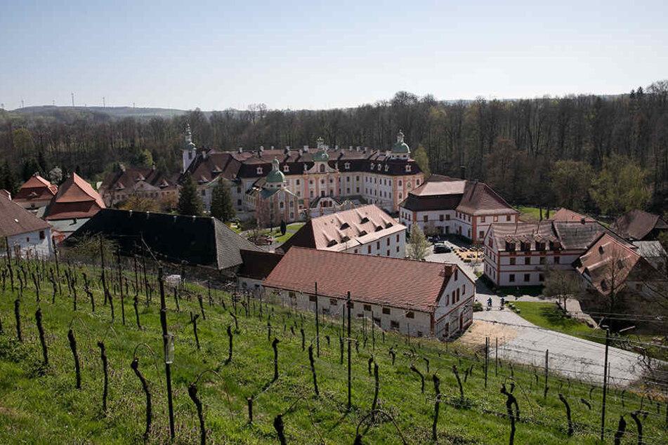 Neben dem Kloster St. Marienthal befindet sich der östlichste Weinberg Deutschlands. Zu den Osterfeiertagen öffnen die Winzer den Weinkeller zum Ausschank.