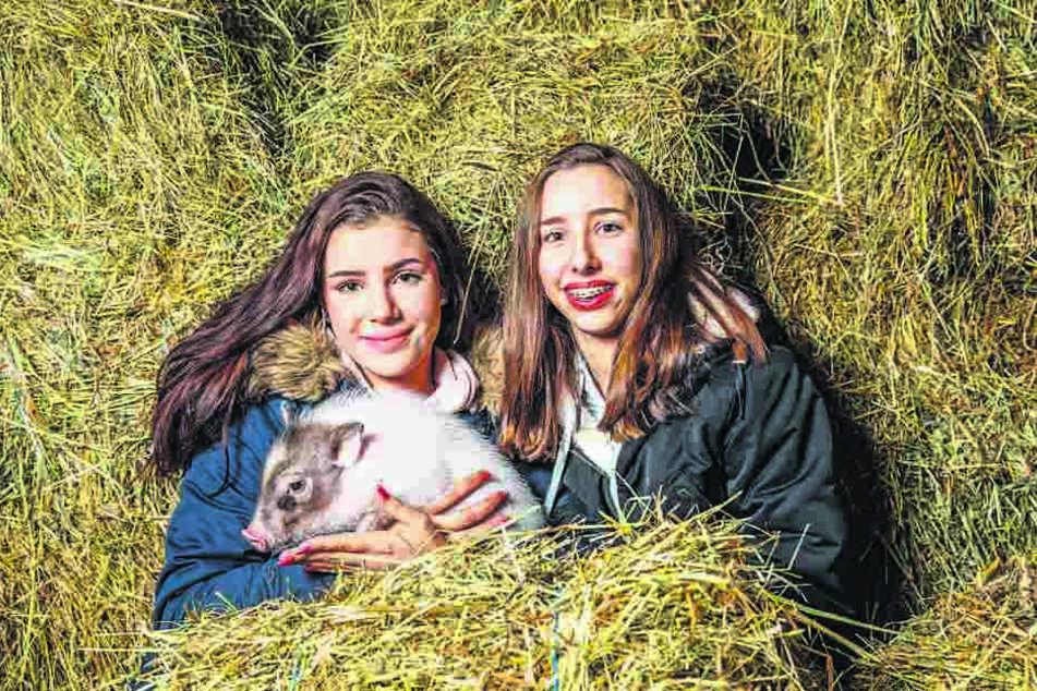 Kaum brachte Sabine Dietmann den Mini-Eber Eddy mit nach Hause, da war er auch schon der Liebling ihrer Töchter Carlotta (16, l.) und Olivia (14).