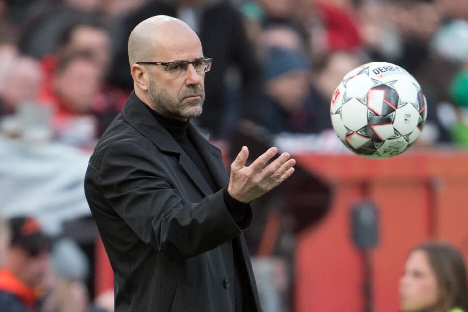 Bayer 04 Leverkusens Coach Peter Bosz hadert nach drei Bundesliga-Niederlagen in Folge und hofft auf eine Trotzreaktion seiner Mannschaft in Stuttgart.