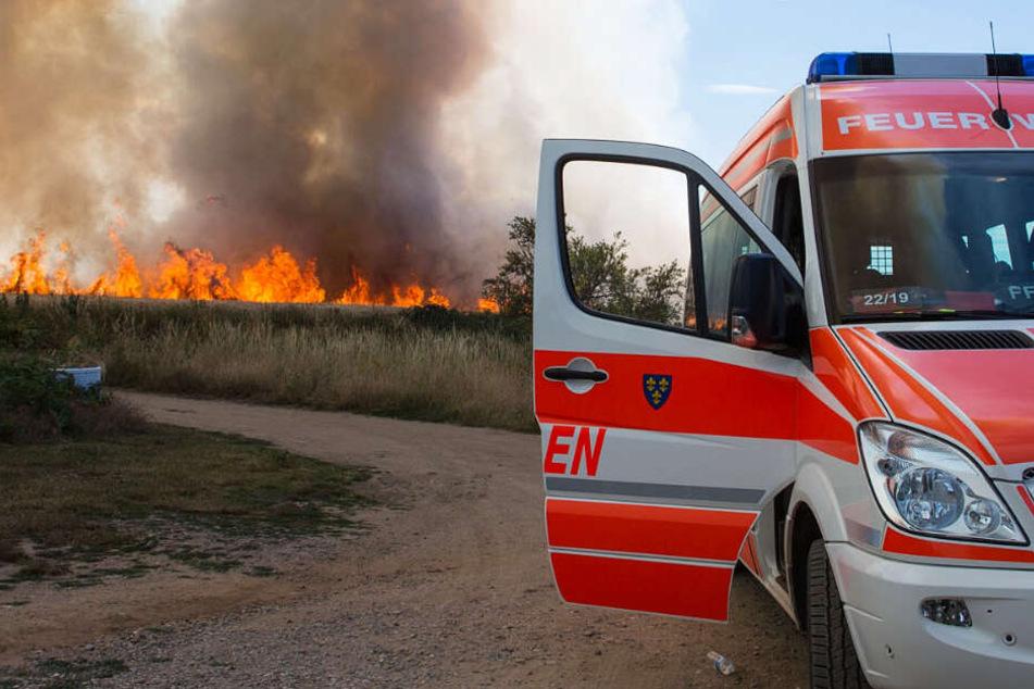 Starker Rauch stieg über dem brennenden Feld auf.
