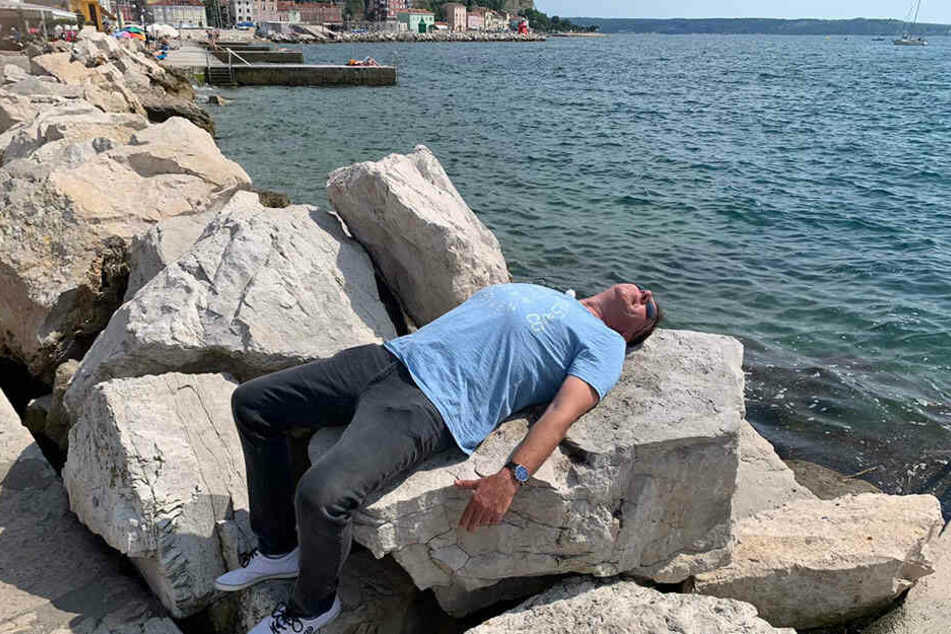 Muss er sich eben wir eine Echse auf dem Stein sonnen - nicht so bequem für den Böttcher.