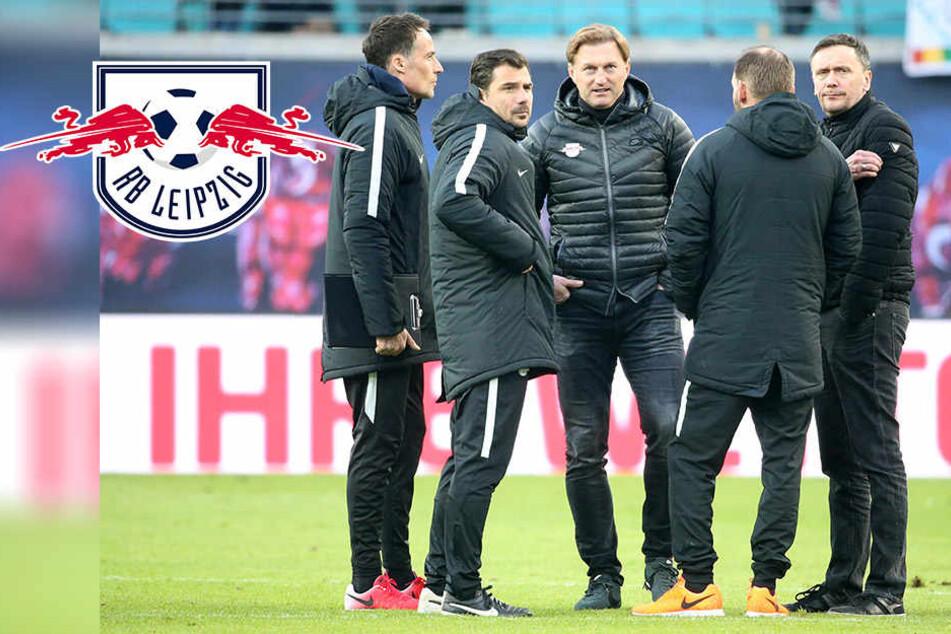 Amtlich! RB Leipzig verliert wichtigen Akteur an Kellerkind Köln