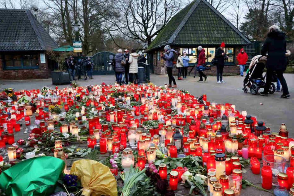 Nach tödlichem Brand: Krefelder Zoo öffnet wieder