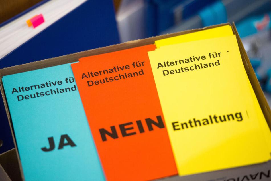 Stimmzettel der Partei Alternative für Deutschland (AFD).